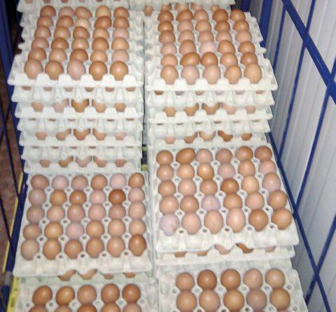 Sahnehäubchen... ein Schwung Eier