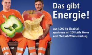 ABK Kiel - Biotonne